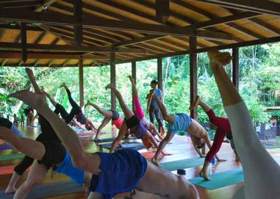yoga-matt-giardano-nyc-costa-rica-retreat